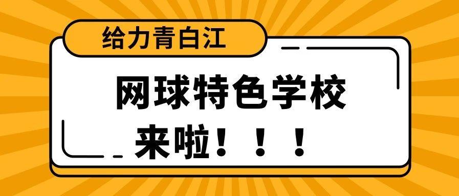 祝贺!青白江新添3所全国网球特色学校