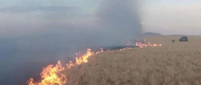 突�l!蒙古��草原大火已蔓延至中��境��