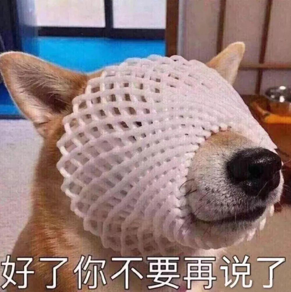 """""""喂!119�幔课�110,我��警犬掉�侠锪恕�"""""""