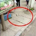 """有点猛!蓬溪某公交站台惊现""""红色活蛇"""",大爷徒手生擒..."""