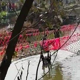 巴黎人官网博览园两游客不慎落水,接下来的事谁都没想到!