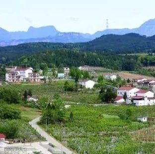 蓬溪这个村喜提180万元市级财政专项扶贫资金,是你所在村吗?