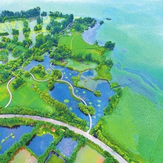 蓬溪被列为四川省污染防治攻坚重点县将得到重点指导和帮扶!