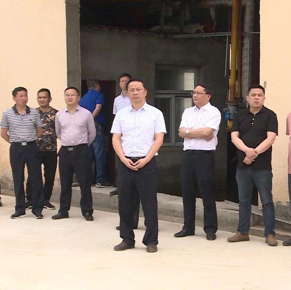 市长李新桥:靶向发力,久久为功,抓好这件事!
