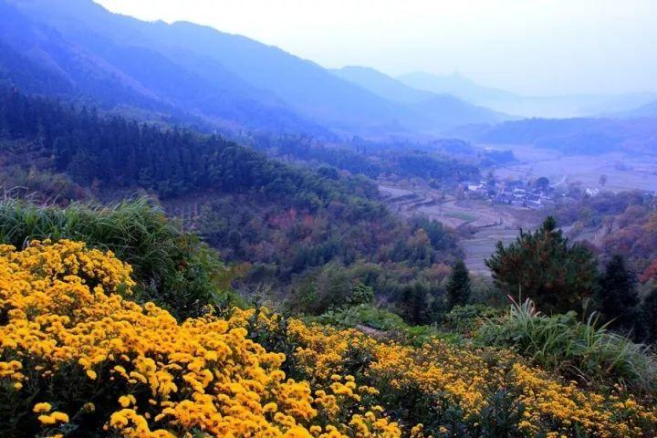 峡谷之秋,色美如画,不容错过!