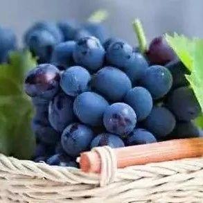 固�市民注意啦:�@7�N水果夏天吃最�B人,可以清�峤祷�,但要注意......