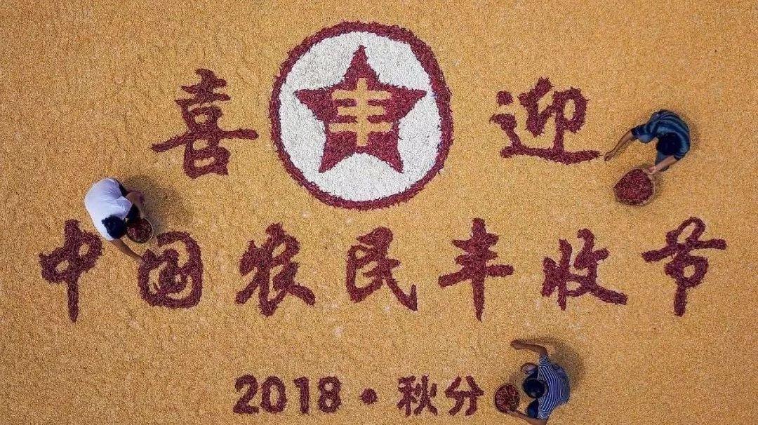 头条|瓜果飘香粮满仓邹城市欢庆首届中国农民丰收节