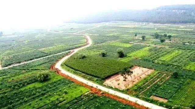 喜讯 邹城入围2018年国家森林城市拟批准名单