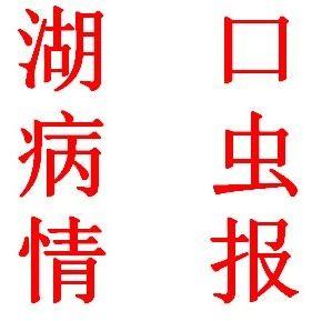 (第十八期)湖口病�x情�螅旱谒拇�稻�v卷�~螟的�l生�c防治