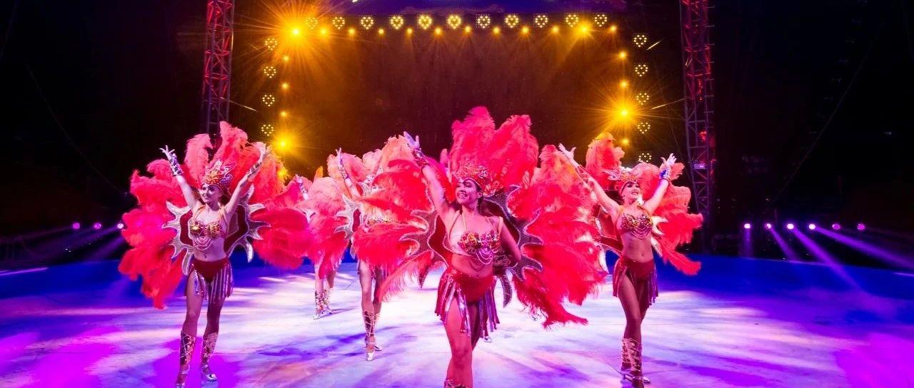 在海边看国际大秀是什么体验?鼎龙湾欢乐大马戏完美诠释