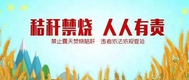 沿陂镇人民政府关于严禁露天焚烧秸秆的通告
