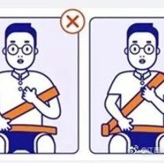 公安部:推动乘车时全员都要使用安全带