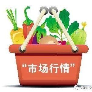 高阳县10月份第四周最新菜价出炉,看看在哪里买不贵!!
