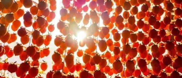 天下柿饼看中国,中国柿饼在富平