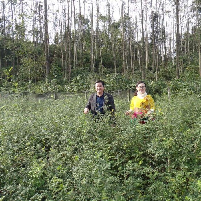 为了帮助农民发展特色产业,这些筠连人总是爱往乡下跑!