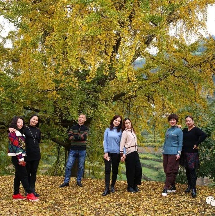 筠连海瀛有棵很大的银杏树,相当漂亮,不去看看是种遗憾!!