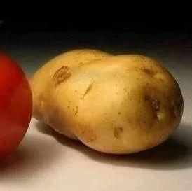 原来番茄和它才是绝配,降血压、抗衰老,营养翻倍!