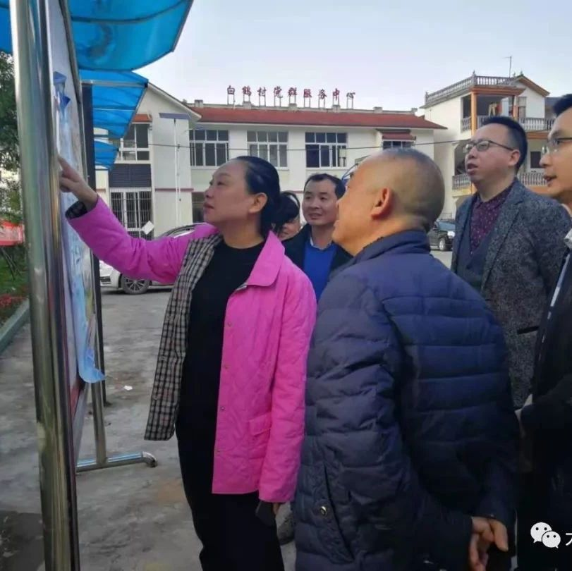 宜宾市政府副市长、筠连县委书记王萍到筠连镇调研村建制调整改革工作
