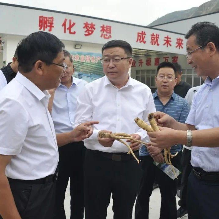 陇南市委副书记、代市长刘永革到文县调研
