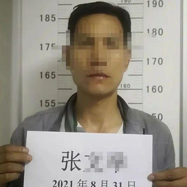 """陇南公安侦破""""8.25重大""""系列合同诈骗案"""