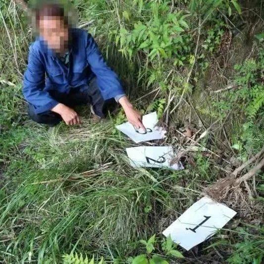 近期,陇南破获多起危害国家重点保护植物案