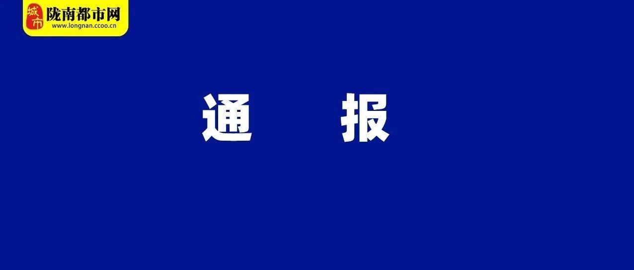 陇南市通报4起违反中央八项规定精神问题