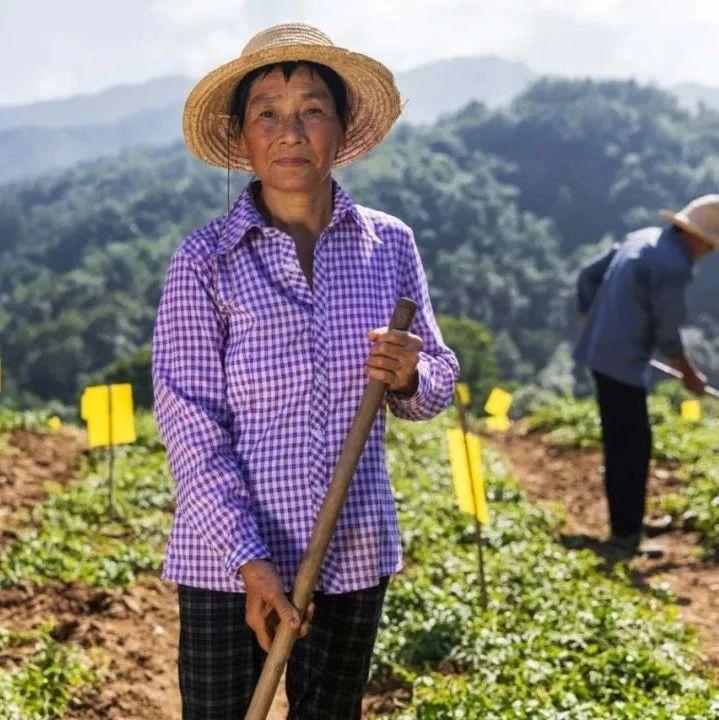 陕西:全面建立防止返贫动态监测和帮扶机制
