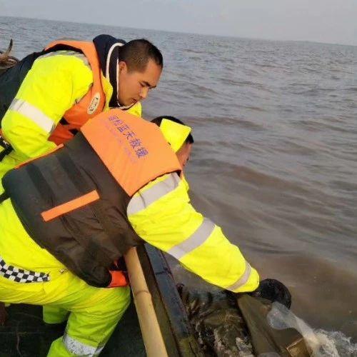 悲剧!宿松55岁男子下网捕鱼突发意外,不幸溺亡