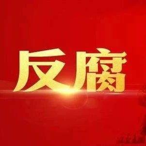 宜�e市公安局�R港���技�g�_�l�^分局�h委委�T、副局�L邱陵接受�O察�{查