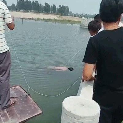 悲痛!济宁又一孩子不幸溺水身亡!