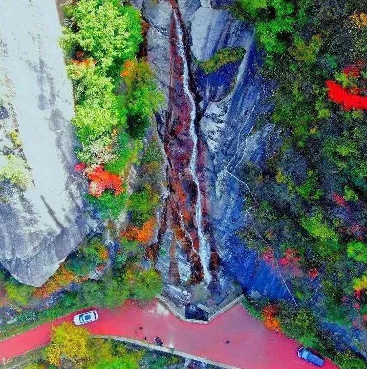 红了红了!栾川这个景区惊艳了整个世界!