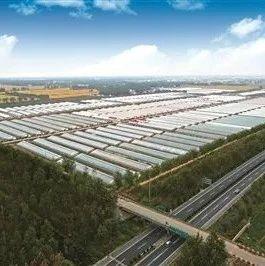 灌云全力打造全省现代农业产业新样板
