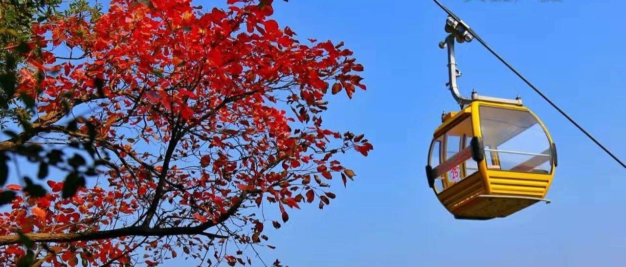 原来天竺山的秋色这么美!看完这些照片我坐不住了…