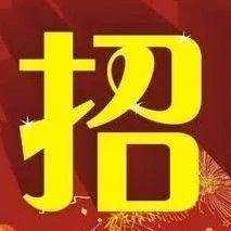 新安人:河南电力公司招人了!