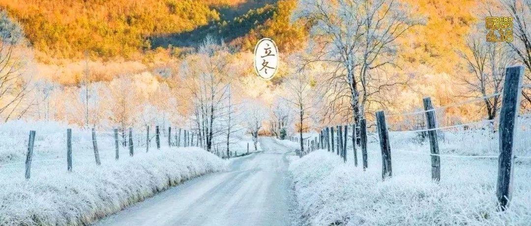 今日立冬,养生习俗全攻略,太珍贵了!值得收藏群发~