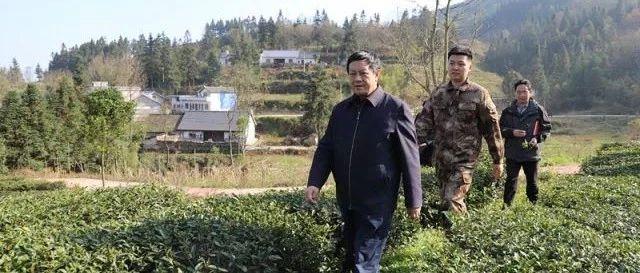 张志祥到坪寨勺米等乡镇调研脱贫攻坚工作