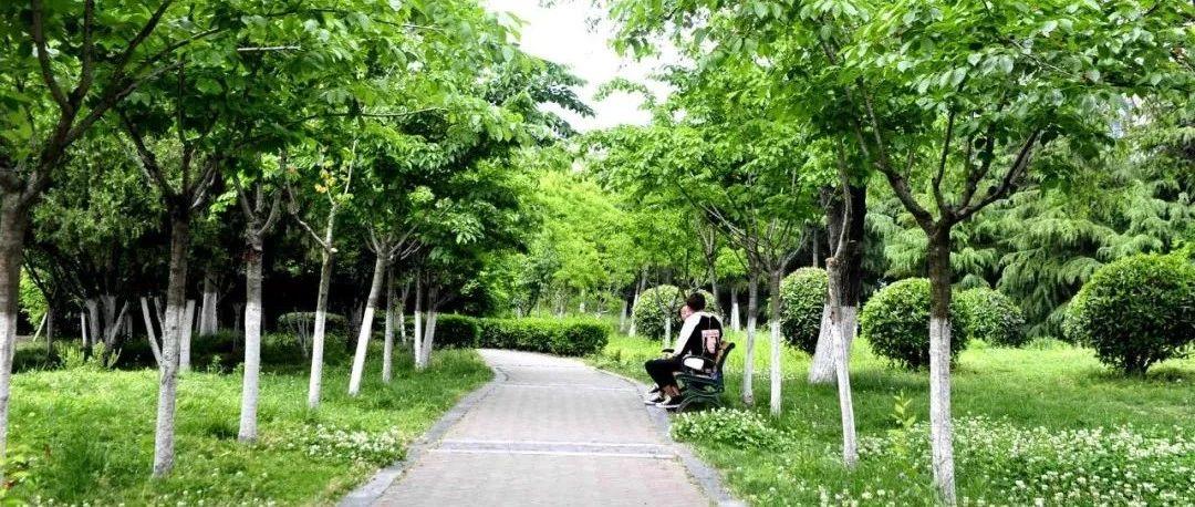 太美了,端午小长假带上家人一起去海州这些公园逛逛吧!