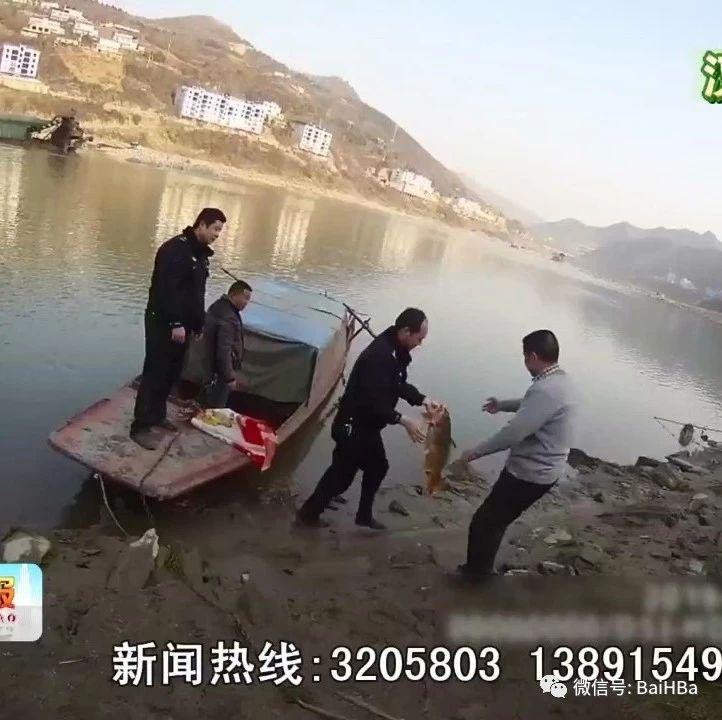 猖狂!湖北籍男子光天化日在白河汉江河内电鱼!