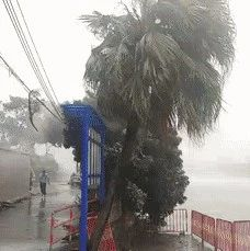 """最强台风""""山竹""""来势汹汹!会登陆河南吗?"""