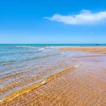 暑期自组团7月5日青岛极地海洋世界+方特梦幻王国+金沙滩三日游