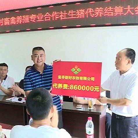 """盐亭来龙乡金罐村:村民当""""股东""""首次分红86万"""