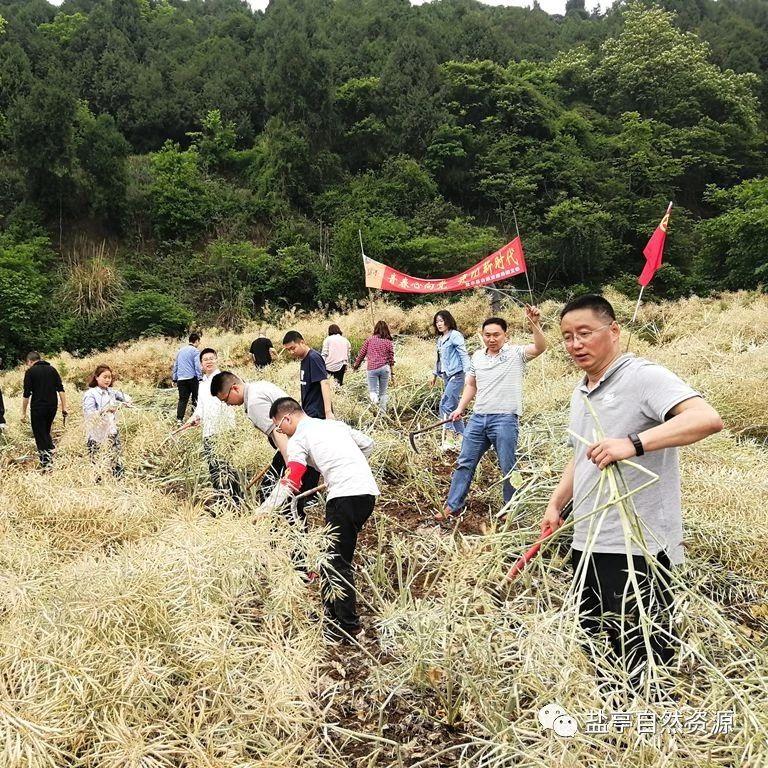 青春心向党,建功新时代|盐亭县自然资源局团支部首次团日活动成功举行
