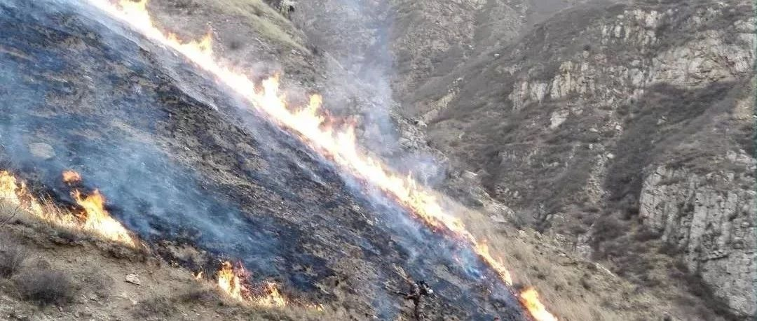 朔州:成功扑灭两起大火