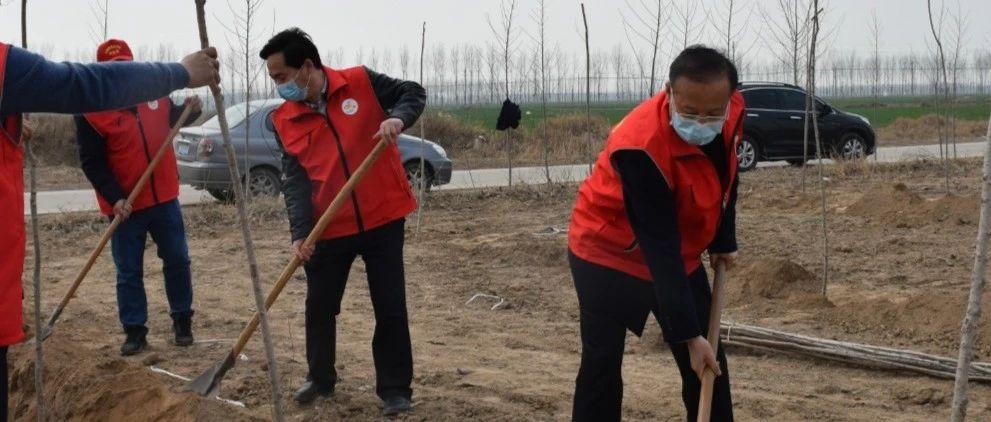 【防疫植树两不误】连庄镇开展植树绿化文明实践活动