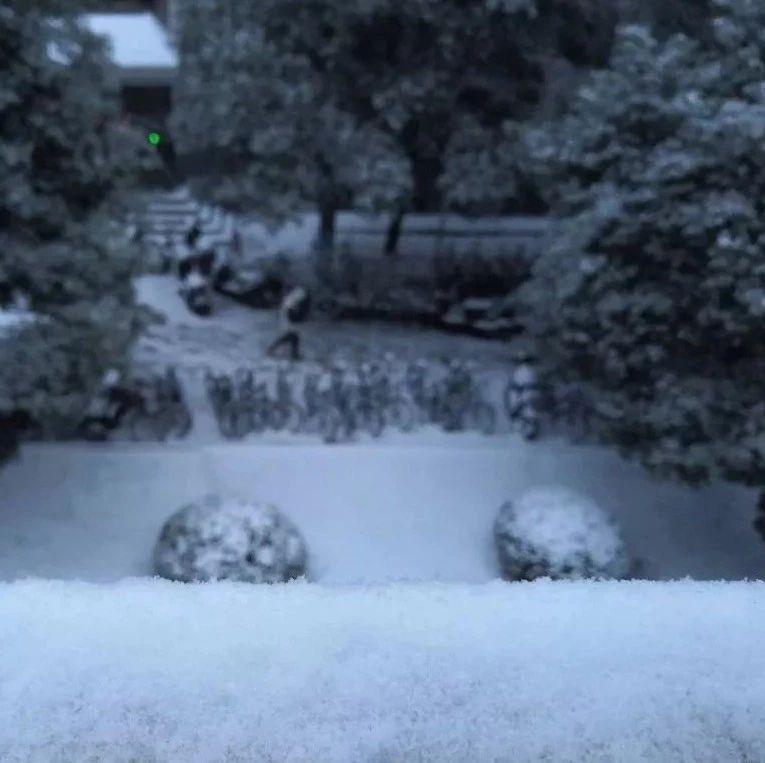 见到下雪太兴奋,21岁南方姑娘疯玩一下午!结果悲剧发生...
