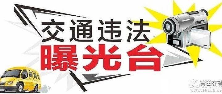 青田县10次以上违法未处理小型车辆曝光(截止6月19日)