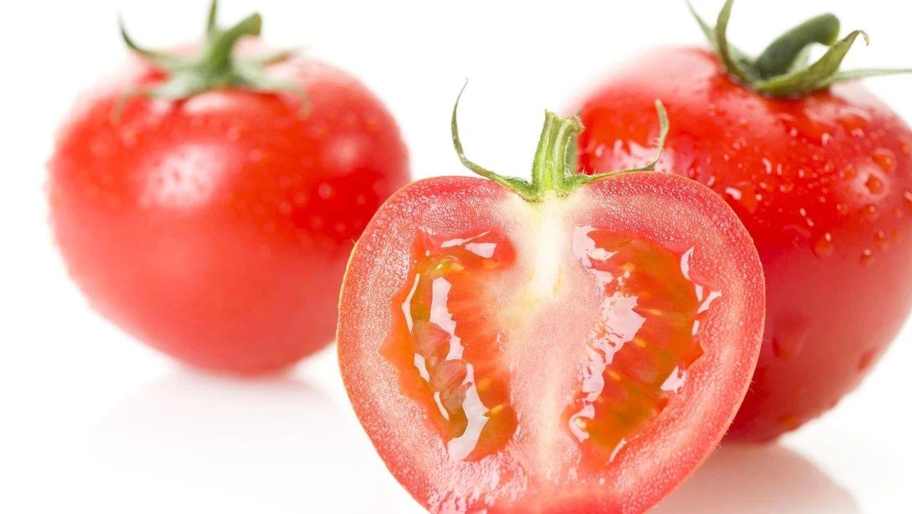 """几招就教你分辨""""西红柿是否为人工催熟""""?瓜州"""