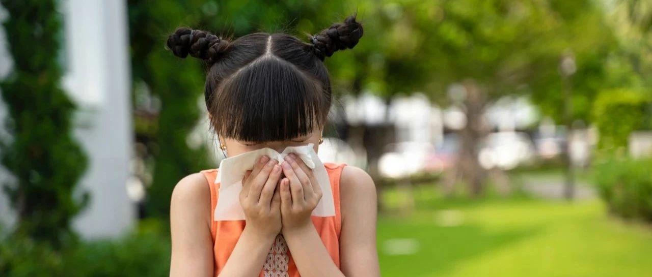 远离鲜花为何还会花粉过敏?原来……