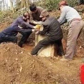 一家3人被咬,2人身亡!一定要小心这个东西...