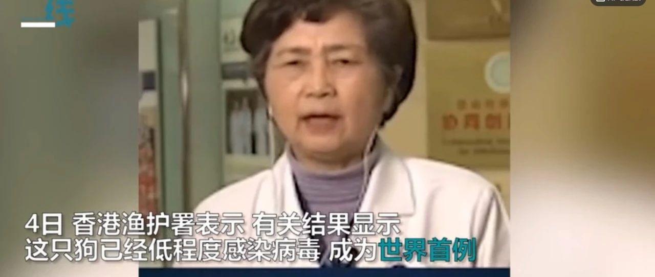 全球首例!香港确诊狗感染病毒李兰娟院士曾就宠物监控发声警告